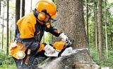 Benzininiai pjūklai miškui STIHL